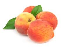 Mogna saftiga persikor Royaltyfri Bild