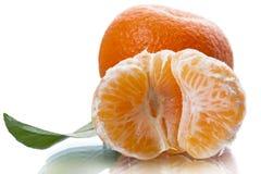Mogna saftiga skivor av mandarinen Arkivbild