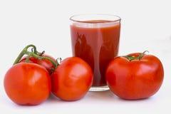 Mogna saftiga tomater Arkivfoton