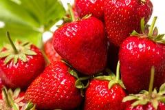 Mogna smakliga jordgubbar med gröna sidor Arkivfoto