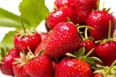 Mogna smakliga jordgubbar med gröna sidor Royaltyfri Fotografi