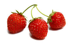 mogna strawberrys tre Royaltyfria Bilder
