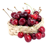 mogna svarta Cherry Royaltyfria Foton