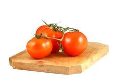 mogna tomater Royaltyfri Fotografi