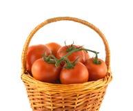 Mogna tomater i den isolerade vide- korgen Royaltyfri Bild