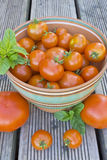 Mogna tomater i en bunke Arkivbild