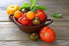 Mogna tomater i en bunke och en basilika Fotografering för Bildbyråer