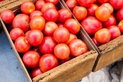 Mogna tomater i lantlig träask Arkivfoto