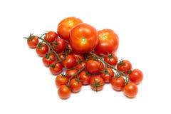 Mogna tomater och en grupp av körsbärsröda tomater på en vit backgrou Royaltyfri Fotografi