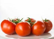 Mogna tomater på plattan bowlar på vit bakgrund, horisontalimag royaltyfria bilder