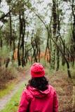 Mognad kvinna som fotvandrar i skogen Arkivfoto