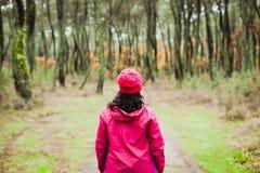 Mognad kvinna som fotvandrar i skogen royaltyfri foto