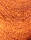 Mogno, textura do jacarandá Foto de Stock Royalty Free