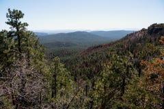 Mogollon Rim Vista View image stock