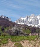 Mogrovejo mountains Royalty Free Stock Photography