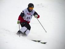 Mogul skier royalty free stock images