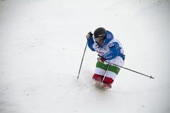 Mogul skier royalty free stock image