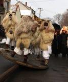 Mohacsi Busojaras karneval i Ungern, Februari 2013 Royaltyfri Bild