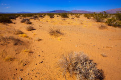 Mohave desert in California Yucca Valley Stock Photography