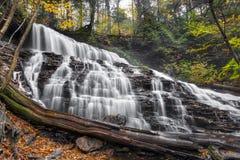 Mohawk Falls at Rickett`s Glen Royalty Free Stock Images