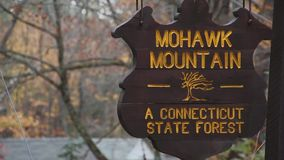 Mohawk Mountain Forest (7 of 9) stock footage