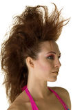 Mohawk Profile Stock Image