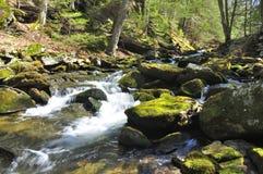 Mohawk Trail Dean's Ravine Brook Stock Photography