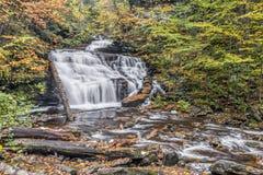 Mohican падает на Ricketts Глен, Пенсильванию Стоковое Фото