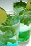 Mohito cocktails. With mint and lime on a graduated background Royalty Free Stock Photos