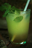 Mohito coctail在烟草农场, Vinales 库存照片