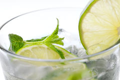 Mohito herb Stock Images