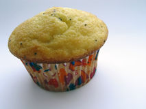Mohn-Muffin lizenzfreies stockfoto