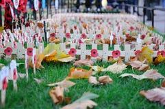 Mohnblume-Tageskreuze im Westminster Abbey Lizenzfreie Stockbilder