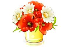 Mohnblume und Kamille in der Wanne Stockfoto