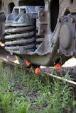Mohnblumen auf der Bahnlinie Lizenzfreie Stockfotografie
