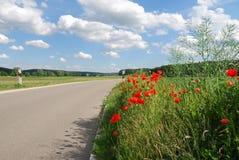 Mohnblumen an einer Landstraße Lizenzfreies Stockbild