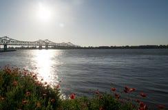 Mohnblumen entlang Fluss Mississipi mit Brücke Lizenzfreies Stockfoto