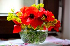 Mohnblumen und Rapsblumenstrauß in einer Schüssel stockbild