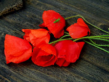 Mohnblumenblumen auf dunkler Tabelle Lizenzfreie Stockfotografie