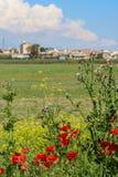 Mohnblumenblumen vor Industriebauten lizenzfreies stockbild
