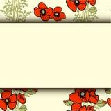 Mohnblumenblumenhintergrund Lizenzfreies Stockbild