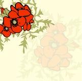 Mohnblumenblumenhintergrund Stockfotografie