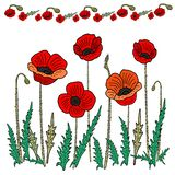 Mohnblumenblumensatz Auch im corel abgehobenen Betrag Handzeichnung im Stil des Kritzelns lizenzfreie abbildung