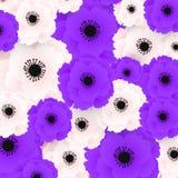 Mohnblumenmuster Hellrosa und purpurrote Mohnblumen auf weißem Hintergrund E lizenzfreie abbildung