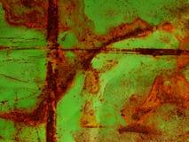 Moho en el plateado de metal Imagenes de archivo