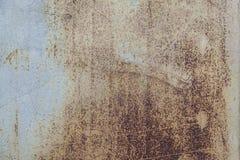 Moho en la pared Foto de archivo libre de regalías