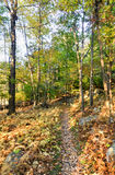Mohonk Preserve. Nature in autumn in Mohonk Preserve in New Paltz, New York stock photo