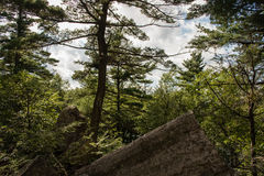 Mohonk preserve in the summer. At night, Hudson valley, New York royalty free stock image