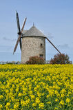 Moidrey wiatraczek w Pontorson Fotografia Royalty Free