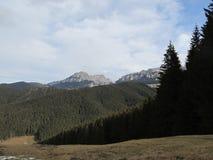 Moieciu de Jos, landskap från en kulle Arkivbilder